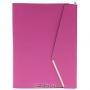 Папка с шариковой ручкой, цвет: малиновый